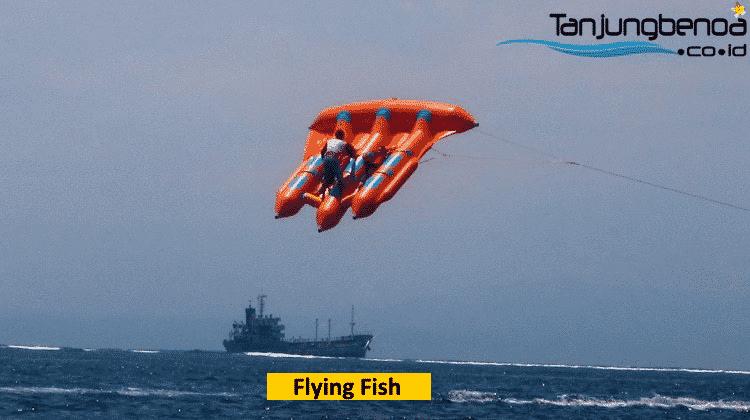 Flying fish di Tanjung Benoa