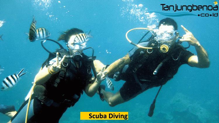 Scuba diving di Tanjung Benoa